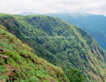 Vagamon suicide point