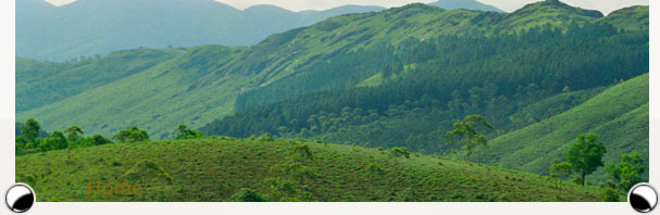 vagamon tourism
